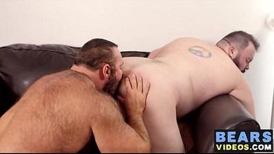 ass  ass fuck  bears