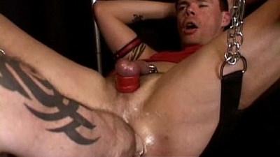 anal  dildos  extreme